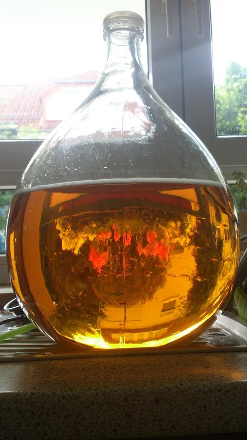 Der Wein nach der Feinfiltration. Glasklar.